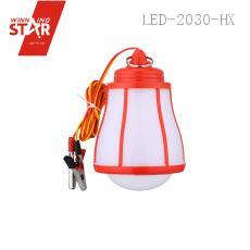 LED Light Bulb with colored box DC  12V 1.5m