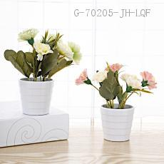 Carnation Potted Plant 16*7cm