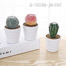 Cactus Potted Green Plant 12*7cm