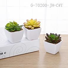 Square Potted Green Plant 8.5*6cm