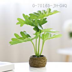 WJ010-DY  Decorative potted  Carton packaging  15*4.5cm